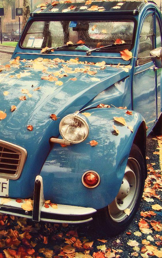 leafcar